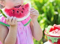 Alimentación Infantil Estival en Elda