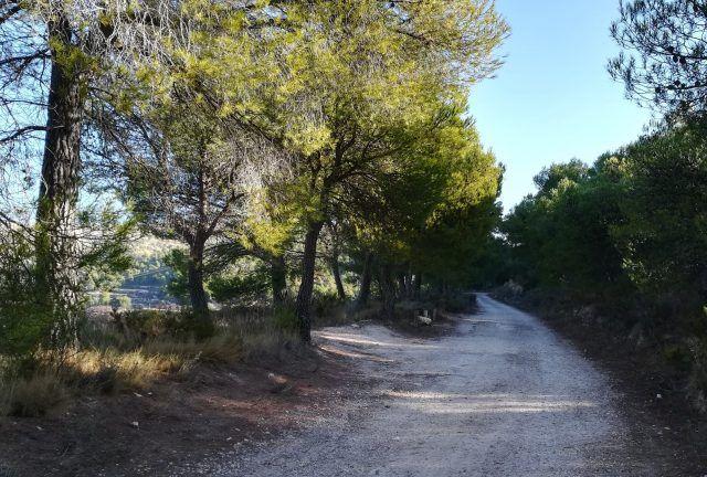 Camino de Catí a Catxuli