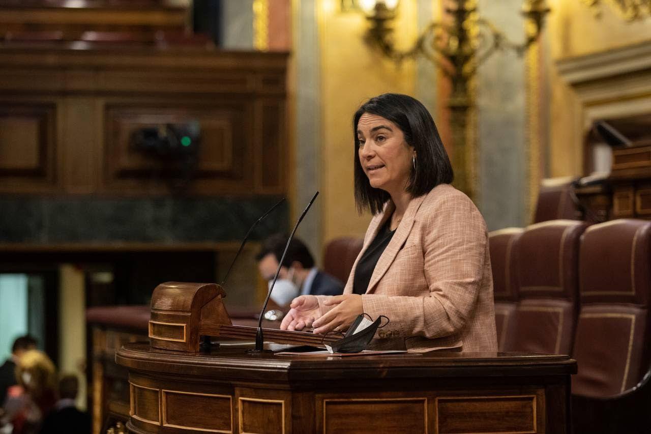 Mari Carmen Martínez, diputada naranja y portavoz de la formación liberal en la Comisión de Industria y Comercio