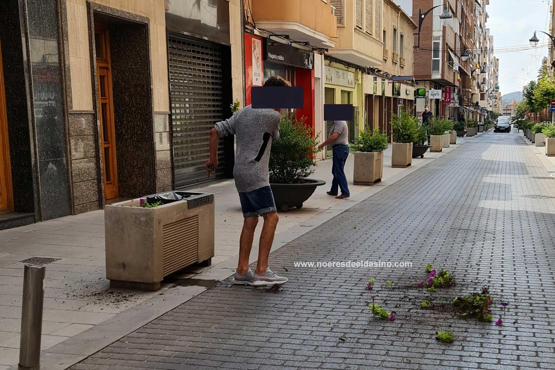 Hombre destrozando jardinería en Elda